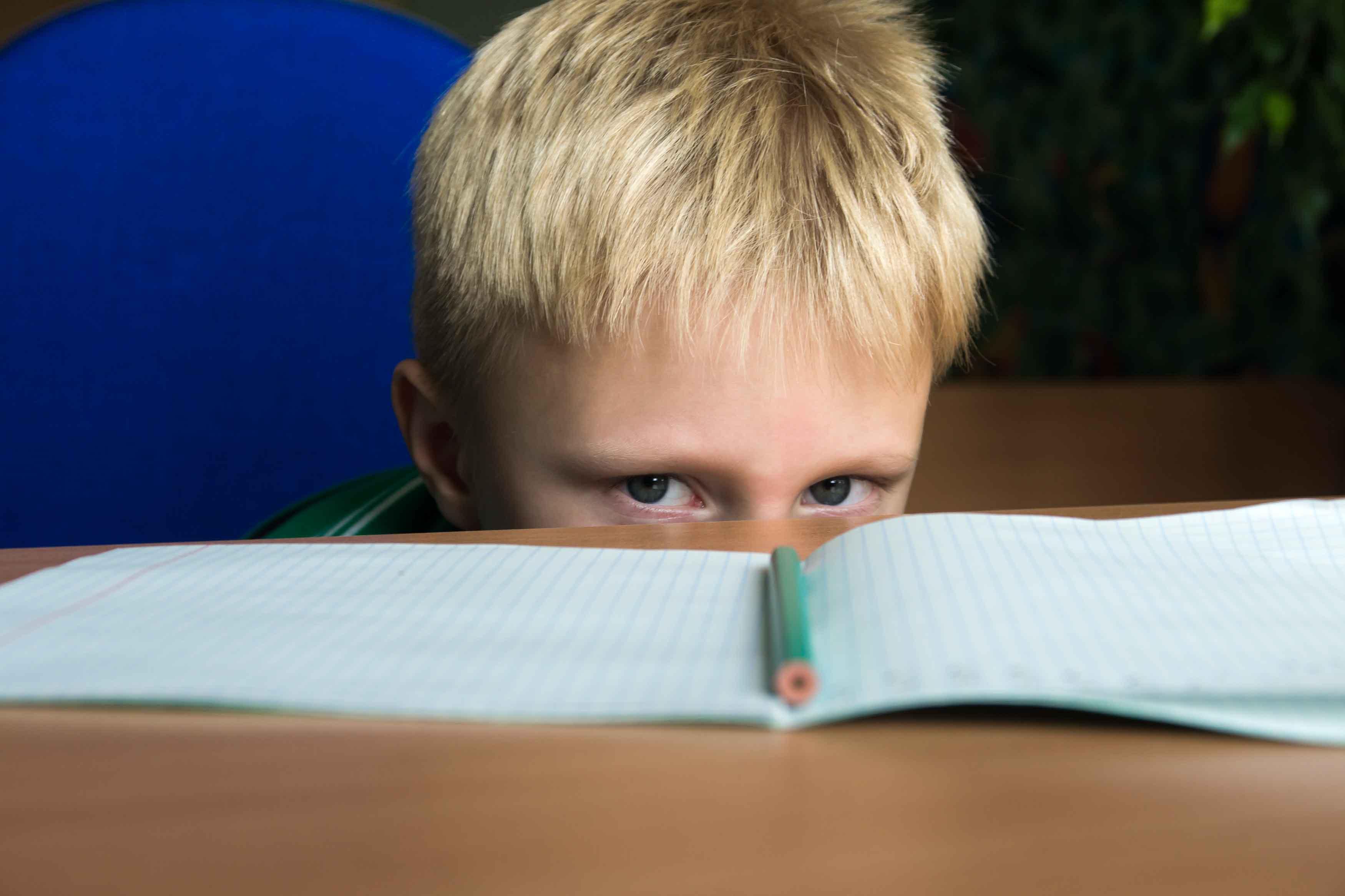 niño frente a libreta en blanco