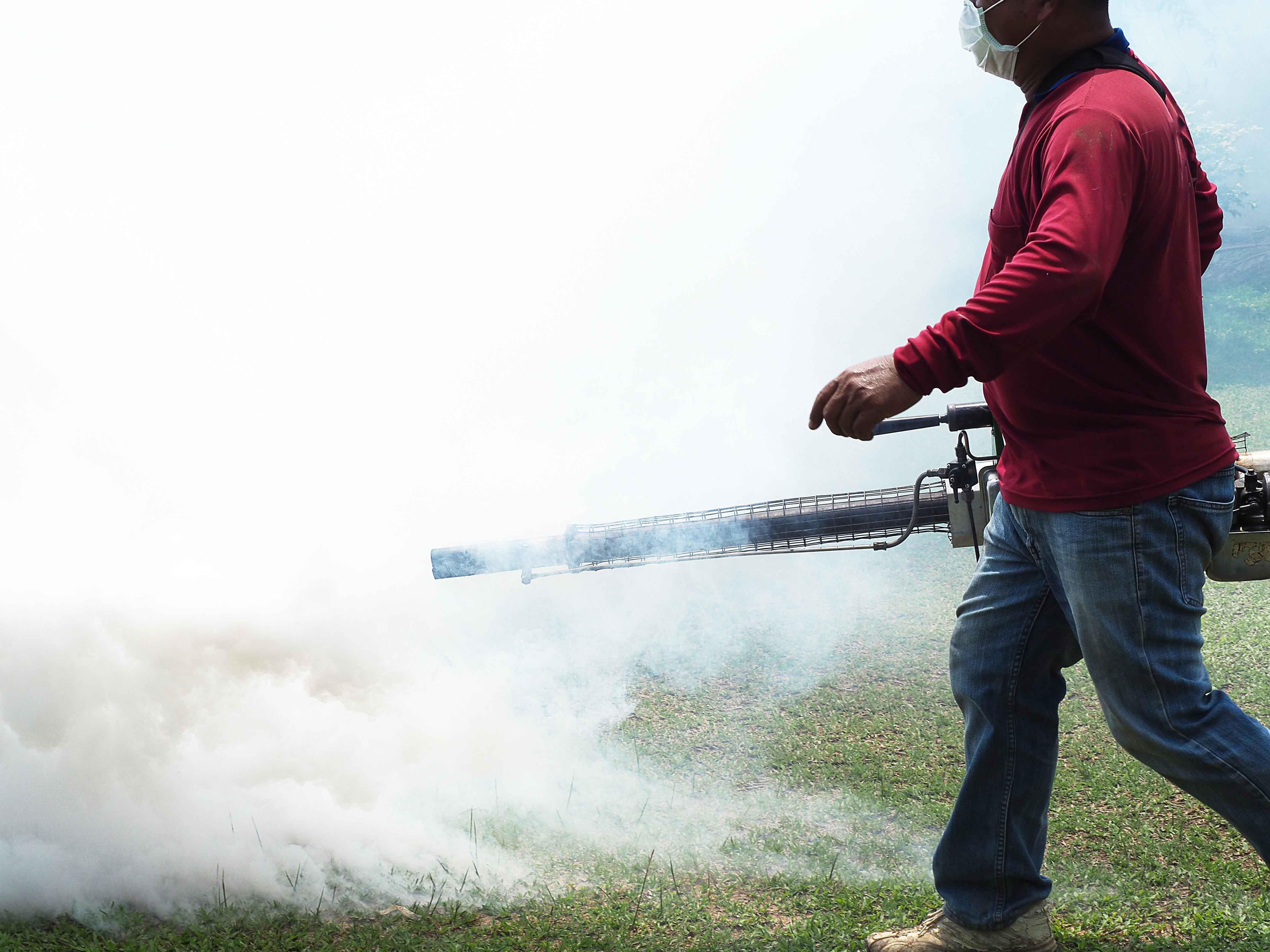Hombre fumigando jardín