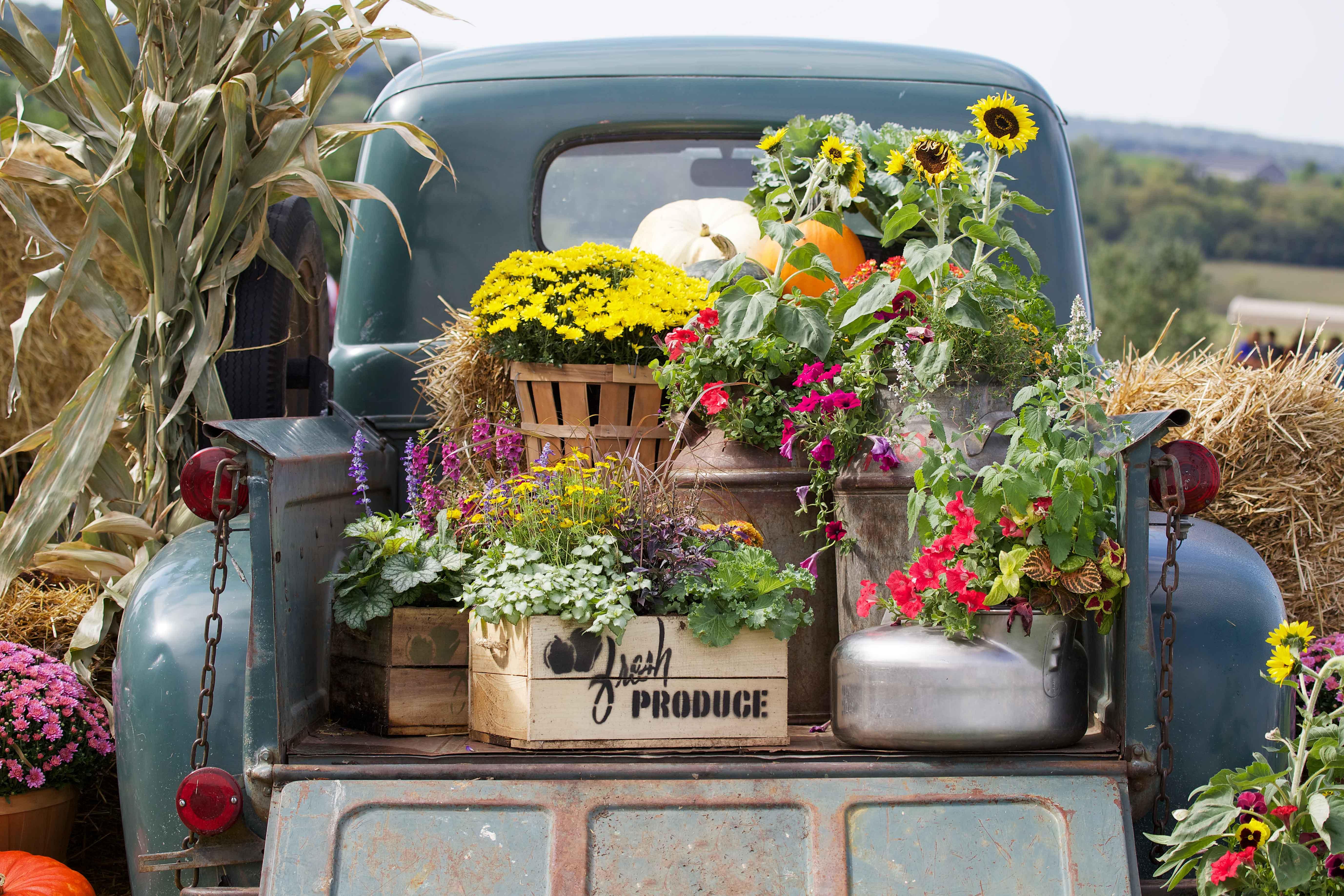 Camioneta decorada con flores